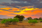 fotografie/landscapes/Namibia_Common_sunset_t.jpg