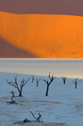 fotografie/landscapes/Namibia_Light_is_coming_t.jpg